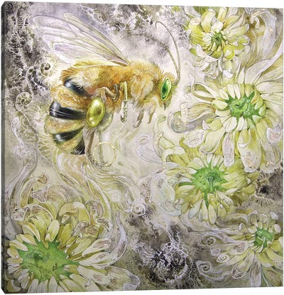 Honeybee III Canvas Art Print