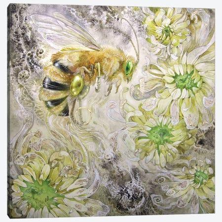Honeybee III Canvas Print #SLW82} by Stephanie Law Canvas Wall Art