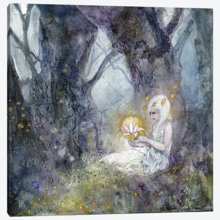 Illuminate Canvas Print #SLW84} by Stephanie Law Art Print
