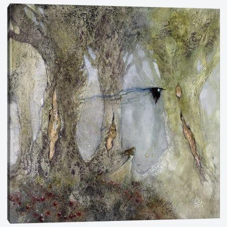 For A Wish Canvas Print #SLW8} by Stephanie Law Canvas Art