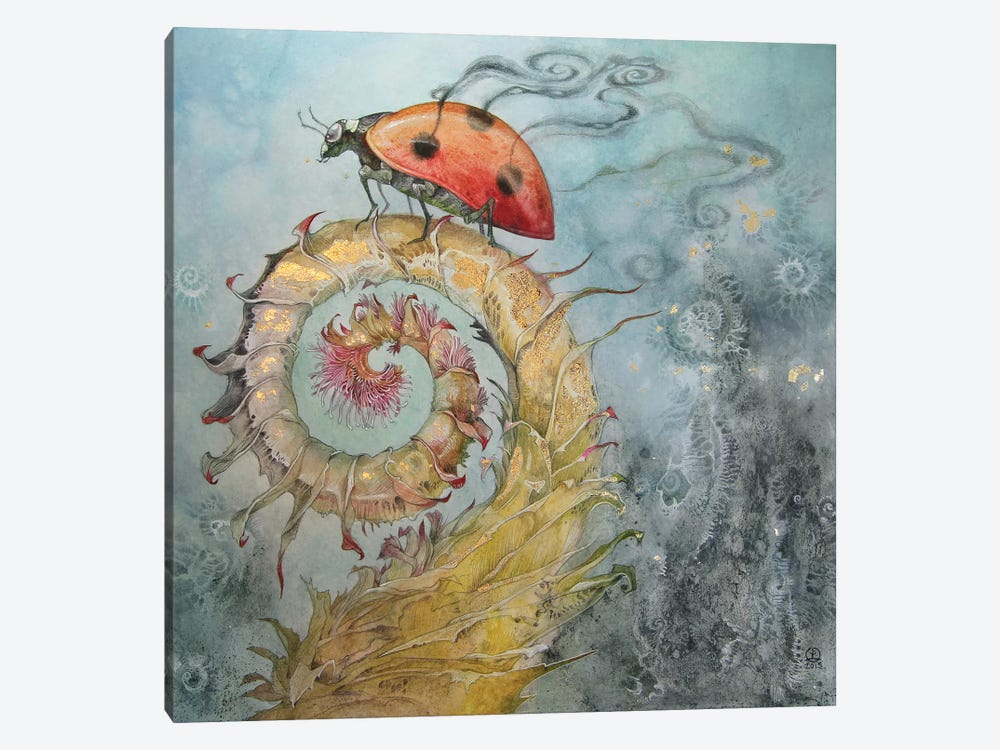 Ladybird by Stephanie Law 1-piece Canvas Art Print