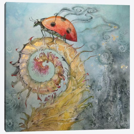 Ladybird Canvas Print #SLW97} by Stephanie Law Canvas Artwork