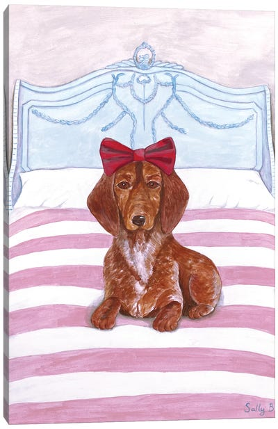 Daschund On Bed Canvas Art Print