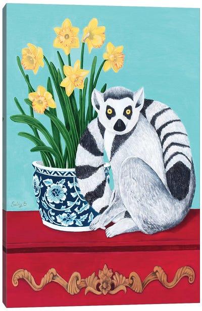 Lemur And Daffodil Canvas Art Print