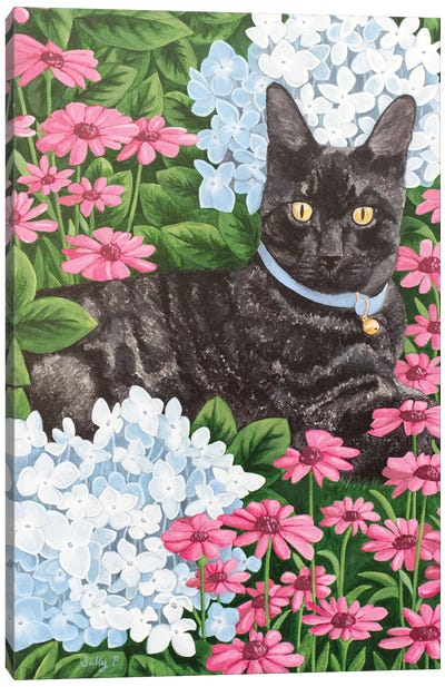 Black Cat With Hydrangea And Daisy Canvas Art Print