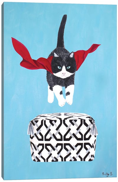 Flying Cat Over Pouf Canvas Art Print