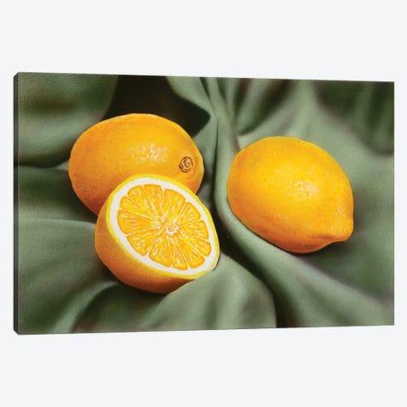 Lemons Canvas Print #SLZ23} by John Salozzo Art Print