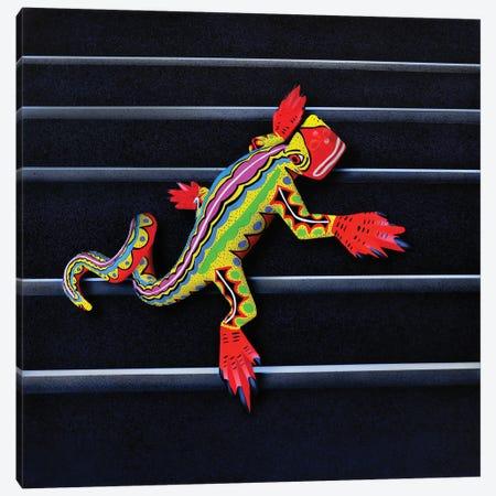 Lizard II Canvas Print #SLZ24} by John Salozzo Canvas Artwork