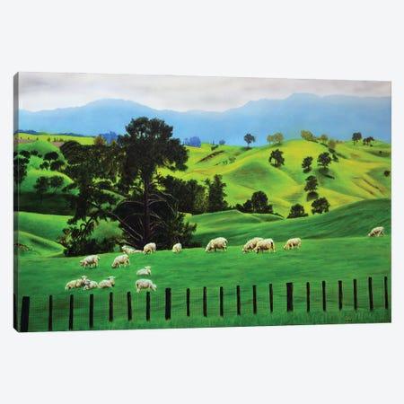Sheep Canvas Print #SLZ35} by John Salozzo Canvas Art Print