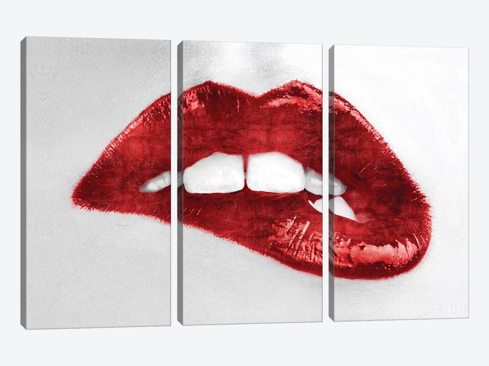Luscious Red by Sarah McGuire 3-piece Canvas Artwork