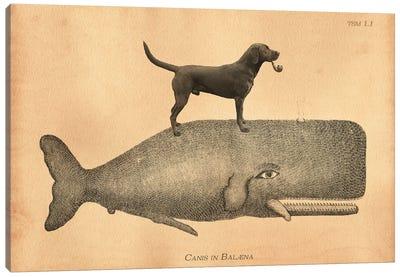 Black Lab Whale Canvas Art Print