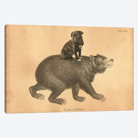 Black Pug Bear Canvas Print #SMD14} by Tea Stained Madness Canvas Wall Art