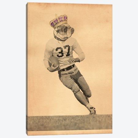 Bulldog Football Player Canvas Print #SMD26} by Tea Stained Madness Canvas Art Print