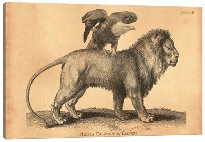 Bald Eagle Riding Lion Canvas Art Print