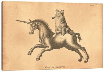 Collie Unicorn Canvas Art Print