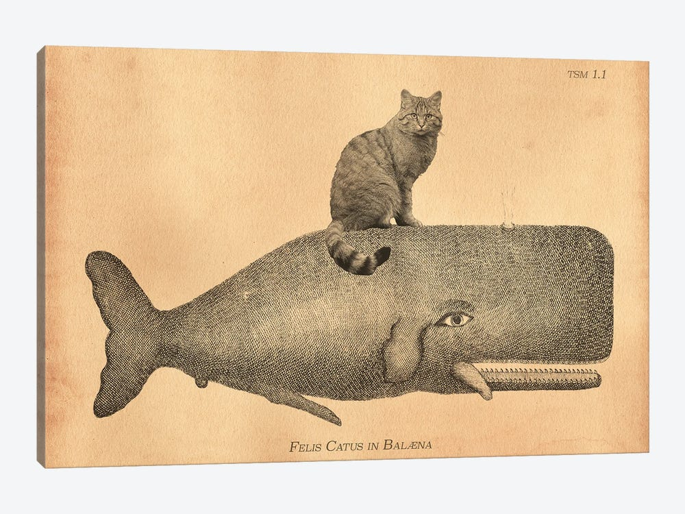 Felis Silvestris Cat Whale by Tea Stained Madness 1-piece Art Print