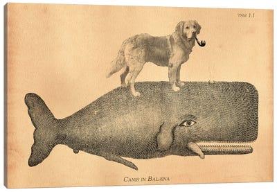 Golden Retriever Whale Canvas Art Print