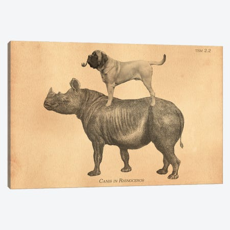 Mastiff Rhino Canvas Print #SMD57} by Tea Stained Madness Canvas Wall Art