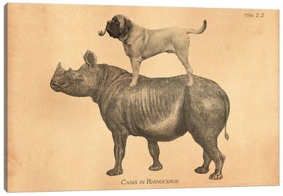 Mastiff Rhino Canvas Art Print