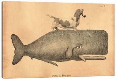 Basset Hound Riding Whale I Canvas Art Print