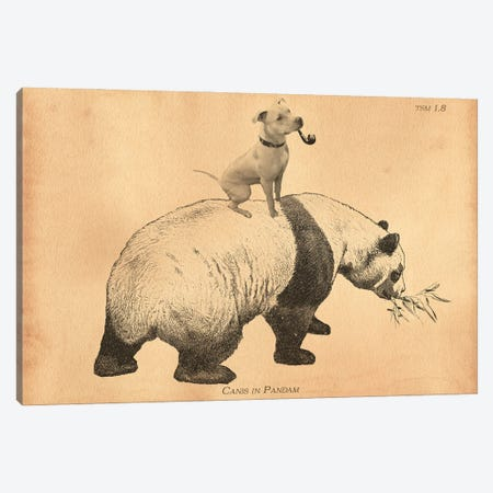 Pitbull Panda Canvas Print #SMD65} by Tea Stained Madness Canvas Print