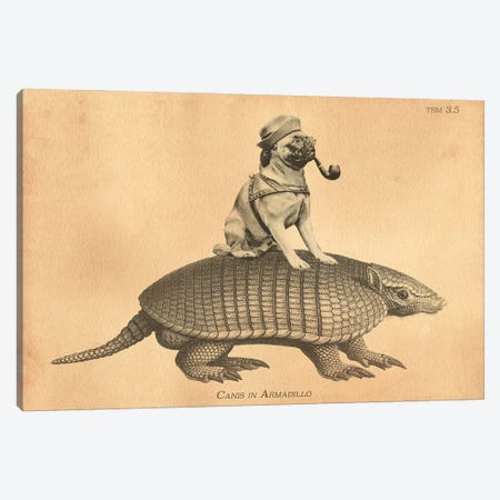 Pug Armadillo Canvas Print #SMD67} by Tea Stained Madness Canvas Art Print