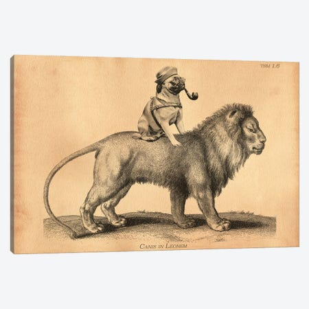 Pug Lion Canvas Print #SMD75} by Tea Stained Madness Canvas Art
