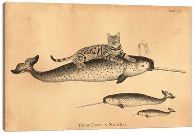 Bengal Cat Narwhal Canvas Art Print