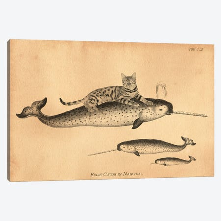 Bengal Cat Narwhal 3-Piece Canvas #SMD9} by Tea Stained Madness Art Print