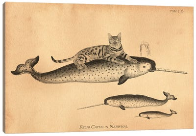 Bengal Cat Narwhal Canvas Art Print