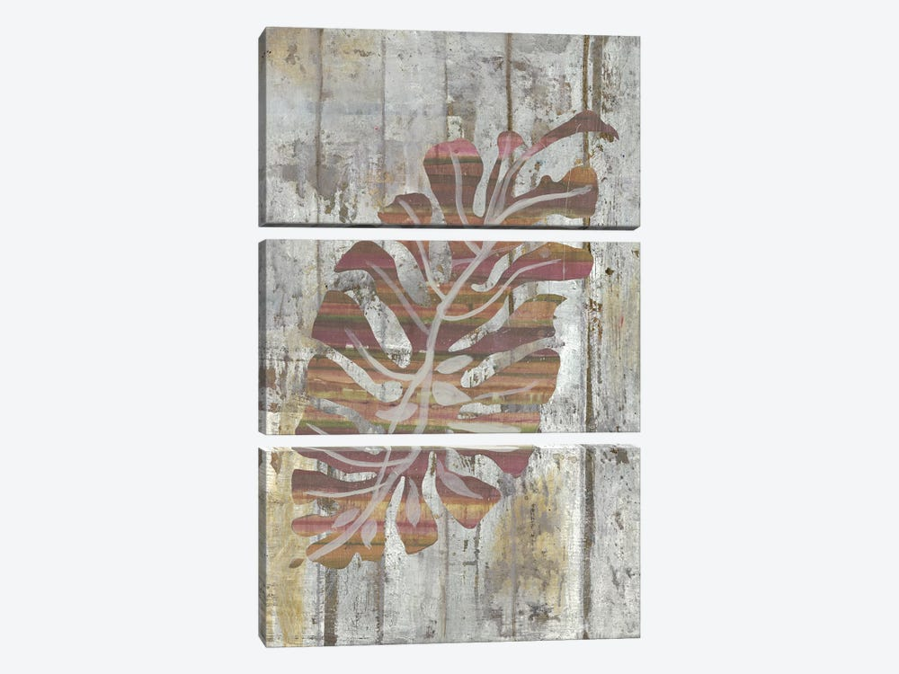 Equator Door by Smith Haynes 3-piece Canvas Print