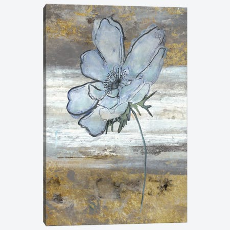 Anemone Fastlane Canvas Print #SMH1} by Smith Haynes Canvas Art Print