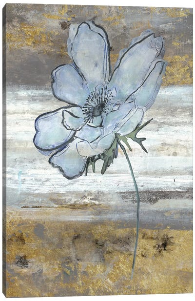 Anemone Fastlane Canvas Art Print