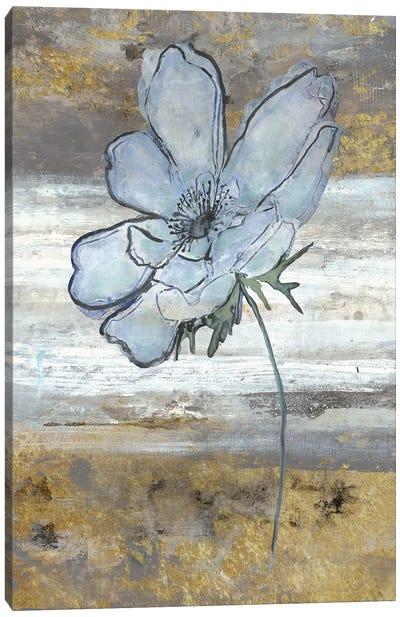 Anemone Fastlane Canvas Art Print