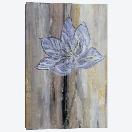 Narrow Tulip Hall Canvas Print #SMH22} by Smith Haynes Canvas Art
