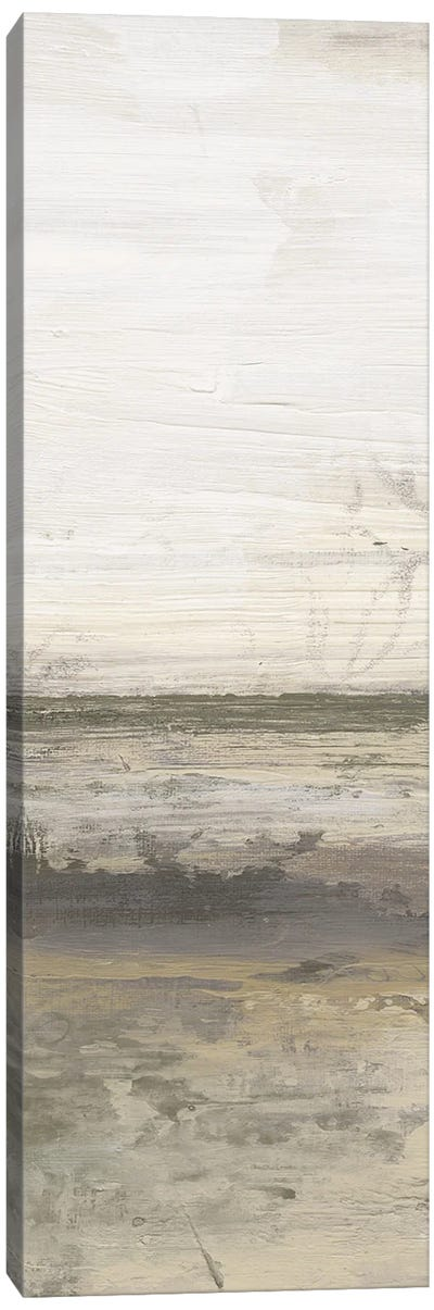 Desert Oasis II Canvas Art Print