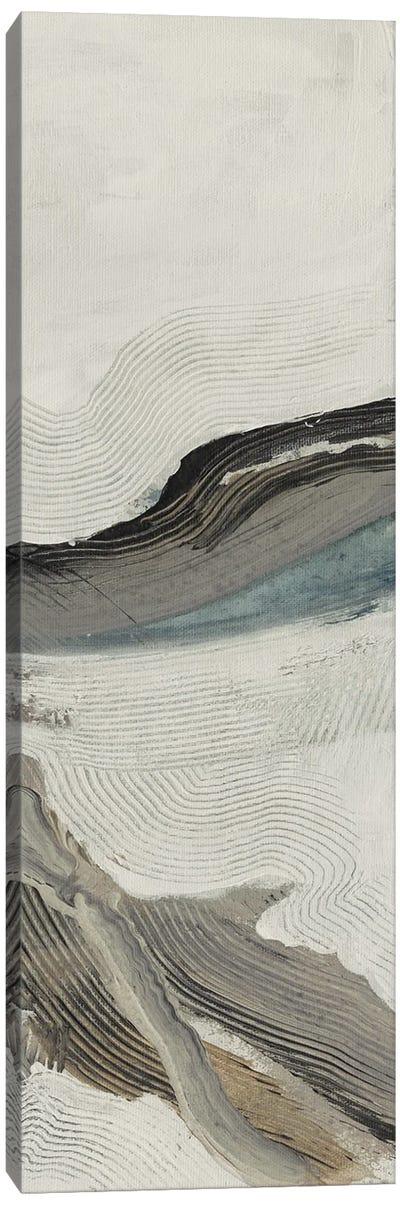 Down Streem Flow 3 Canvas Art Print