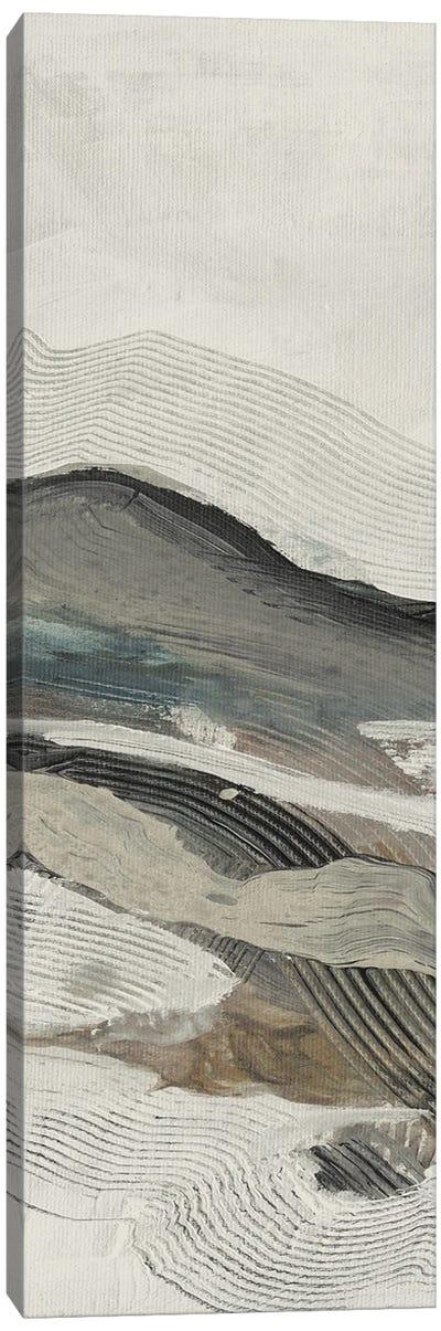 Down Streem Flow II Canvas Art Print