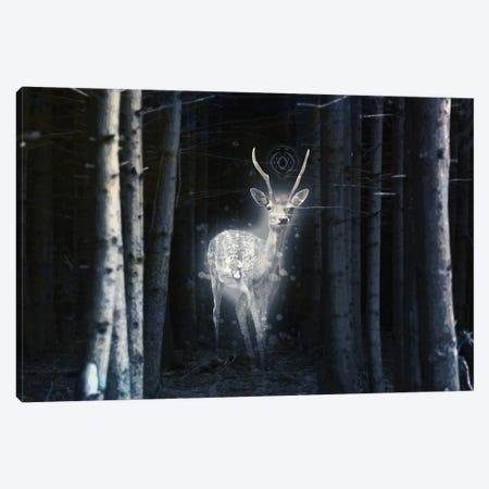 Apparition Canvas Print #SML10} by Seamless Art Print