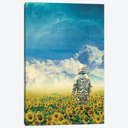 In The Field Canvas Print #SML49} by Seamless Canvas Artwork