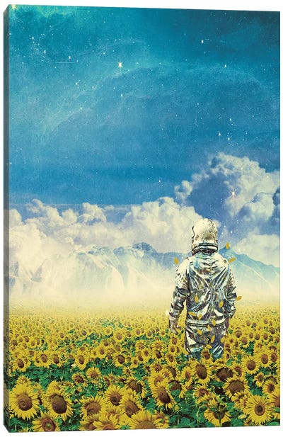 In The Field Canvas Art Print