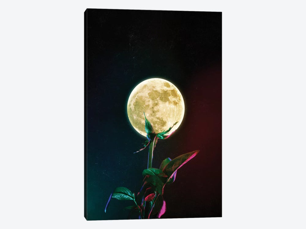 Moon Flower by Seamless 1-piece Canvas Print