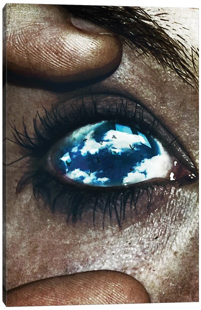 Ojos Color Cielo Canvas Art Print
