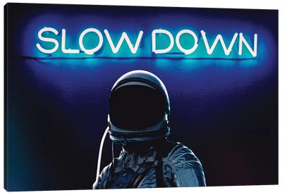 Slown Down Canvas Art Print