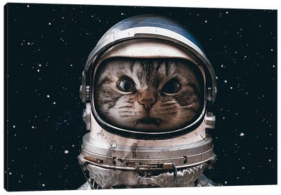 Space Catet Canvas Art Print