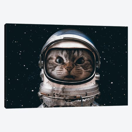 Space Catet 3-Piece Canvas #SML72} by Seamless Canvas Art Print