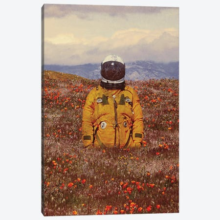 Ambivalence Canvas Print #SML7} by Seamless Canvas Artwork