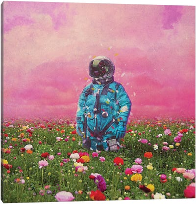 The Flower Field Canvas Art Print