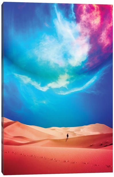 The Vast Desert Canvas Art Print