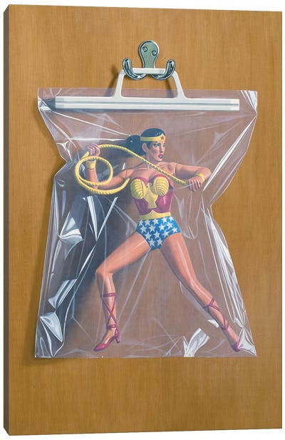 Diana Prince Canvas Art Print